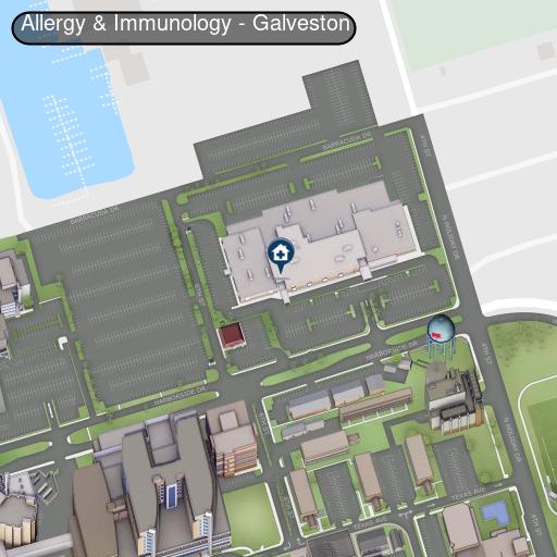 Allergy and Immunology, Galveston