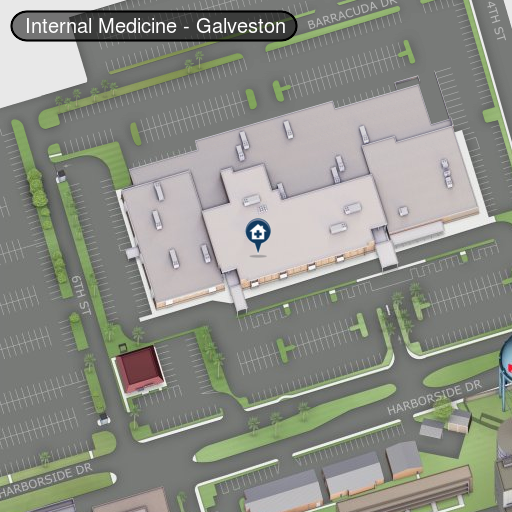 Internal Medicine, Galveston